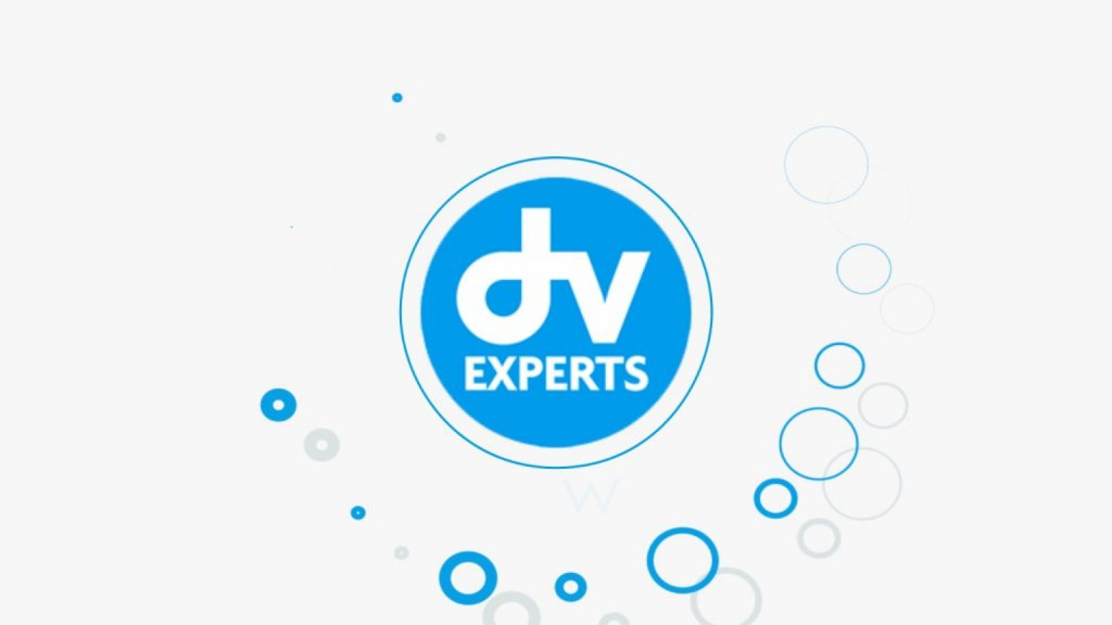 Dv expert